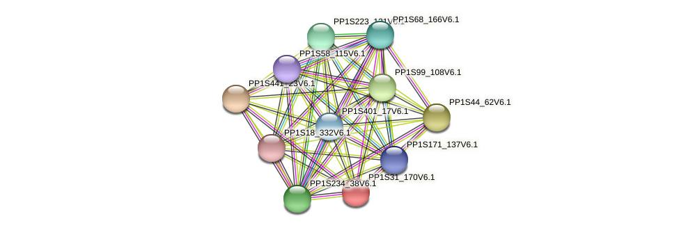 PP1S31_170V6.1 protein (Physcomitrella patens) - STRING interaction network