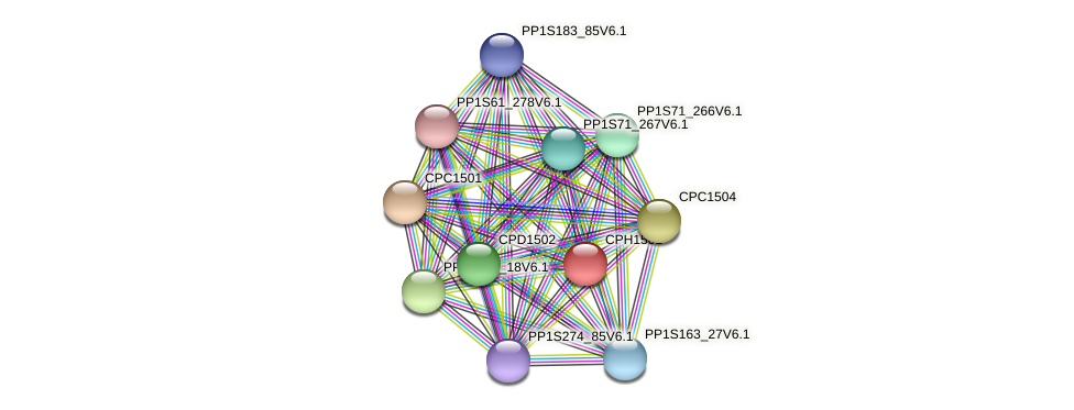 PP1S31_201V6.1 protein (Physcomitrella patens) - STRING interaction network