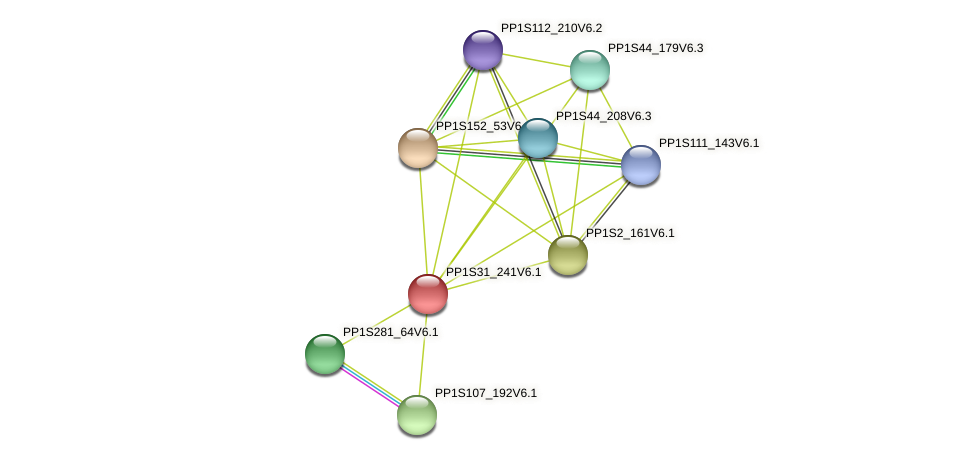 PP1S31_241V6.1 protein (Physcomitrella patens) - STRING interaction network