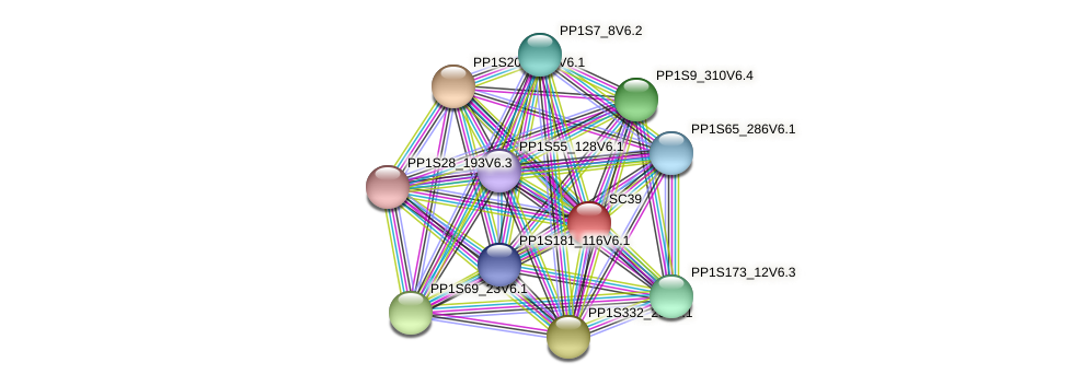 PP1S31_294V6.1 protein (Physcomitrella patens) - STRING interaction network