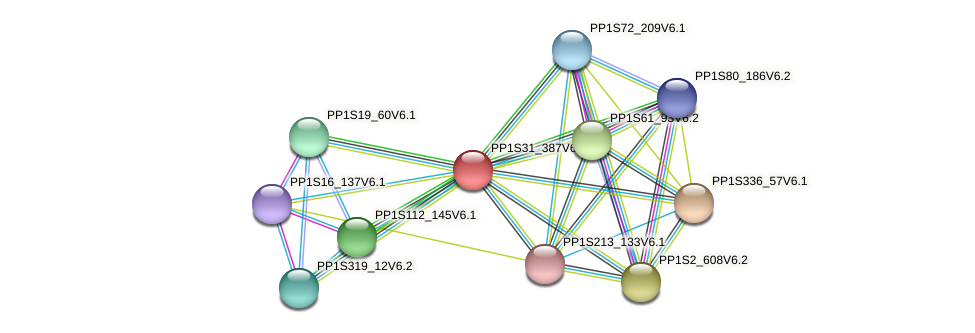 PP1S31_387V6.1 protein (Physcomitrella patens) - STRING interaction network