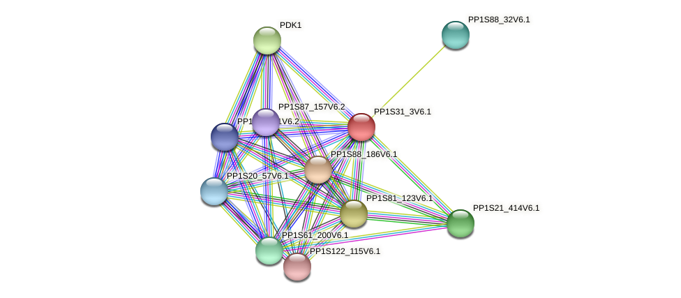 PP1S31_3V6.1 protein (Physcomitrella patens) - STRING interaction network
