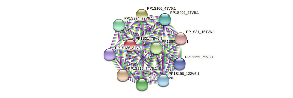 PP1S31_78V6.1 protein (Physcomitrella patens) - STRING interaction network