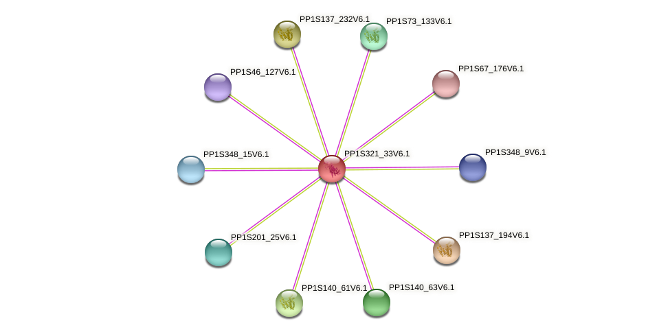PP1S321_33V6.1 protein (Physcomitrella patens) - STRING interaction network