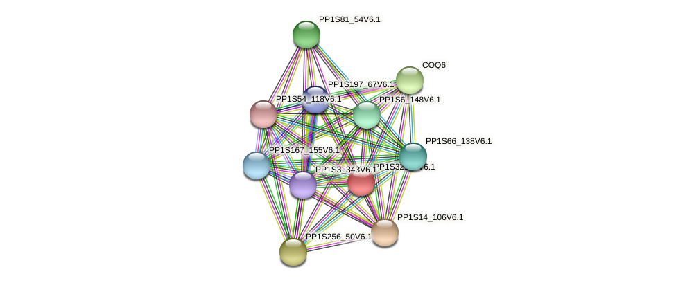 PP1S321_8V6.1 protein (Physcomitrella patens) - STRING interaction network
