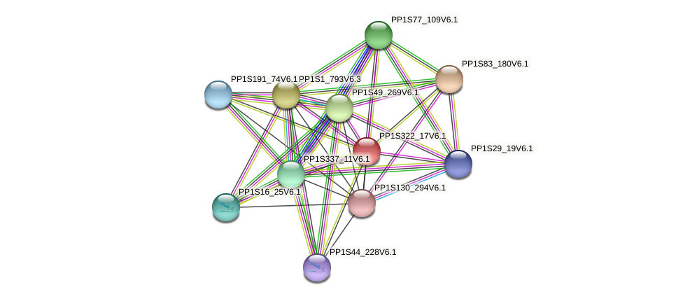 PP1S322_17V6.1 protein (Physcomitrella patens) - STRING interaction network