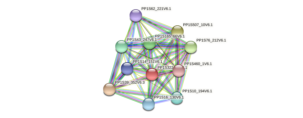 PP1S322_22V6.1 protein (Physcomitrella patens) - STRING interaction network