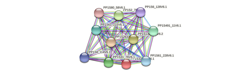 PP1S322_39V6.1 protein (Physcomitrella patens) - STRING interaction network