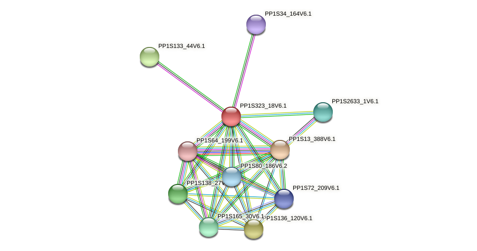 PP1S323_18V6.1 protein (Physcomitrella patens) - STRING interaction network