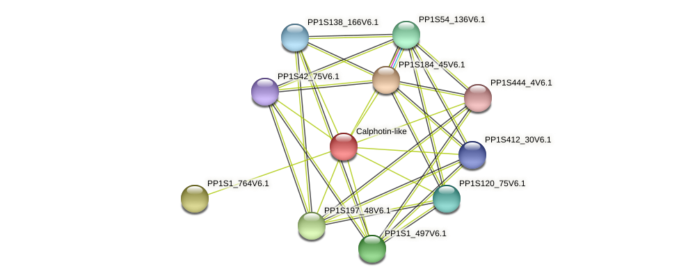PP1S323_30V6.1 protein (Physcomitrella patens) - STRING interaction network