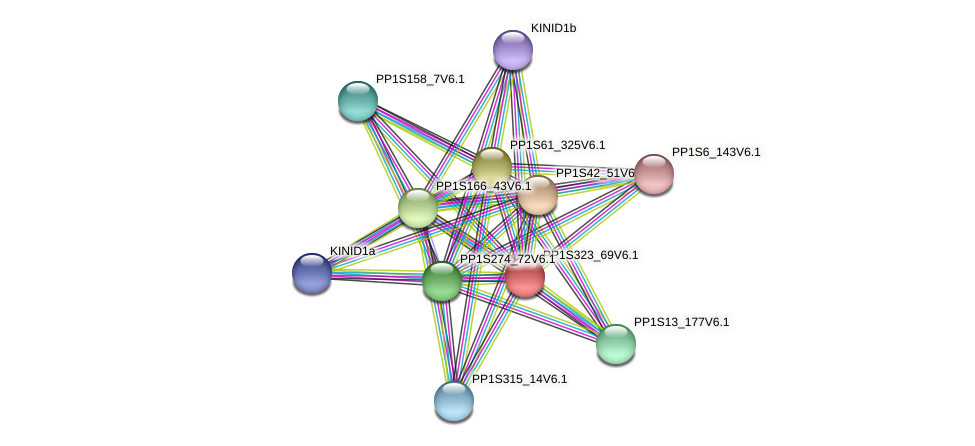 PP1S323_69V6.1 protein (Physcomitrella patens) - STRING interaction network