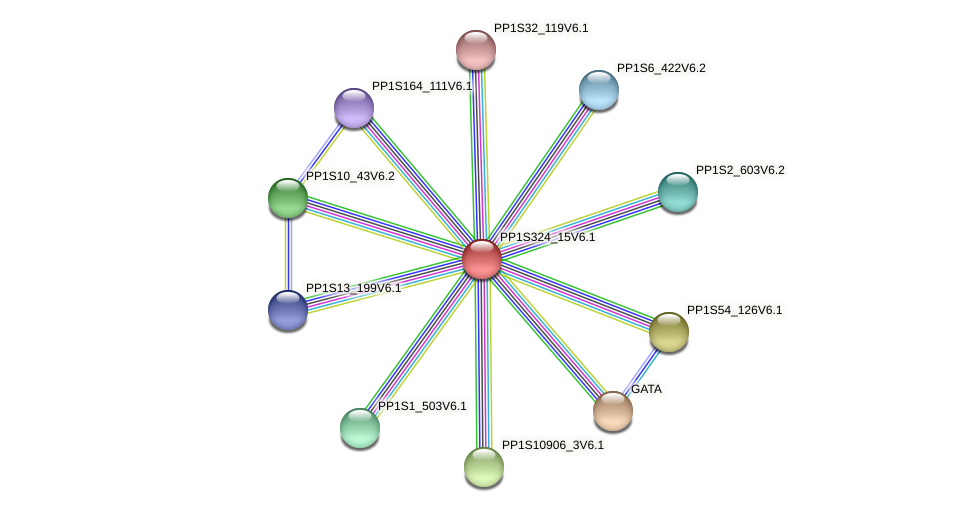 PP1S324_15V6.1 protein (Physcomitrella patens) - STRING interaction network