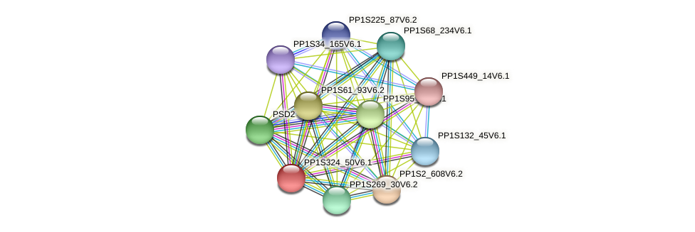 PP1S324_50V6.1 protein (Physcomitrella patens) - STRING interaction network
