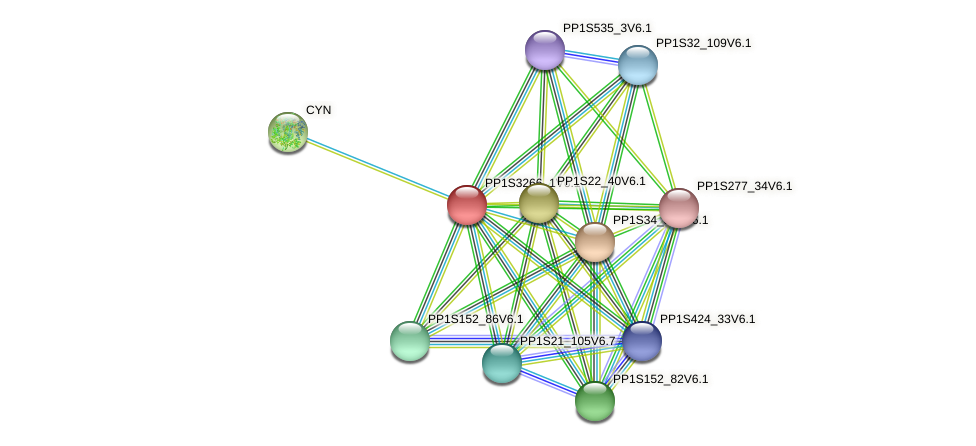 PP1S3266_1V6.1 protein (Physcomitrella patens) - STRING interaction network