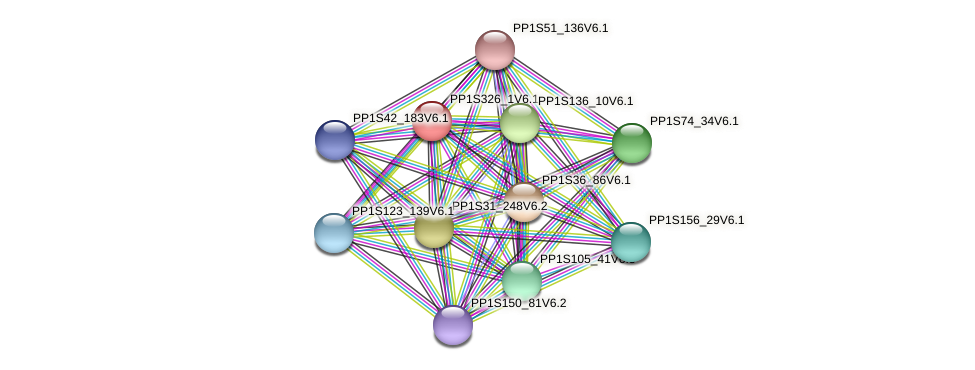 PP1S326_1V6.1 protein (Physcomitrella patens) - STRING interaction network