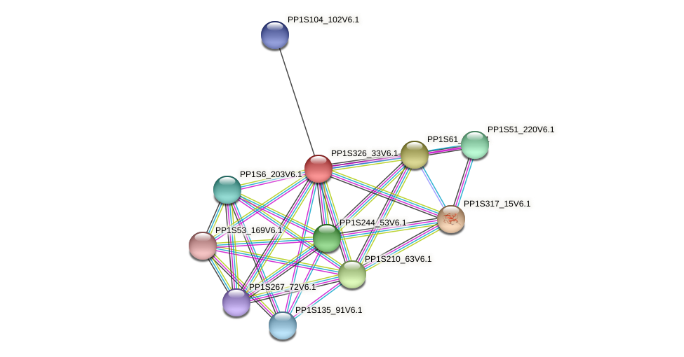 PP1S326_33V6.1 protein (Physcomitrella patens) - STRING interaction network