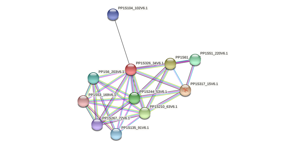 PP1S326_34V6.1 protein (Physcomitrella patens) - STRING interaction network