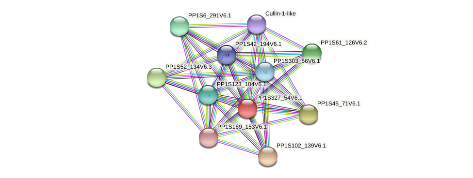 PP1S327_54V6.1 protein (Physcomitrella patens) - STRING interaction network