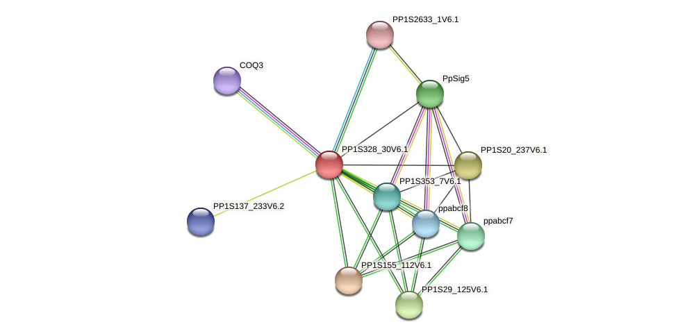 PP1S328_30V6.1 protein (Physcomitrella patens) - STRING interaction network