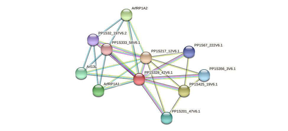 PP1S328_42V6.1 protein (Physcomitrella patens) - STRING interaction network