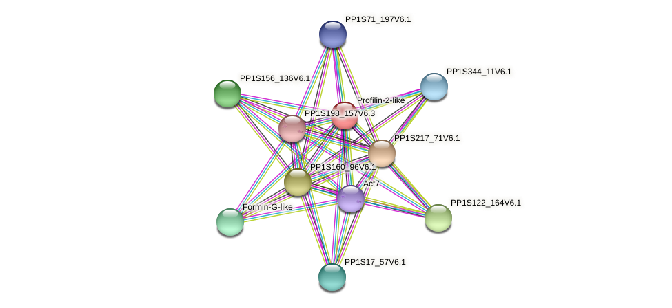 PP1S328_44V6.1 protein (Physcomitrella patens) - STRING interaction network