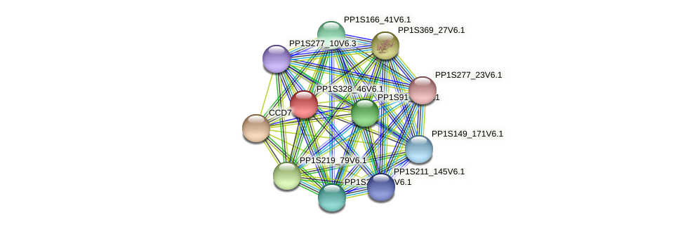 PP1S328_46V6.1 protein (Physcomitrella patens) - STRING interaction network