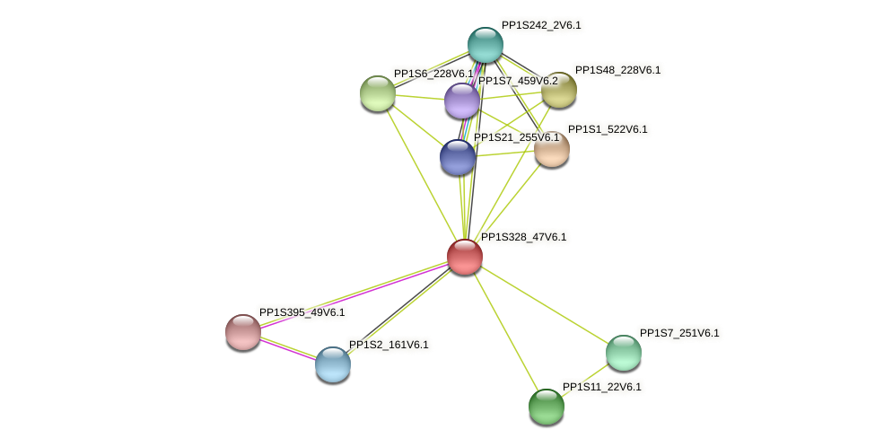 PP1S328_47V6.1 protein (Physcomitrella patens) - STRING interaction network