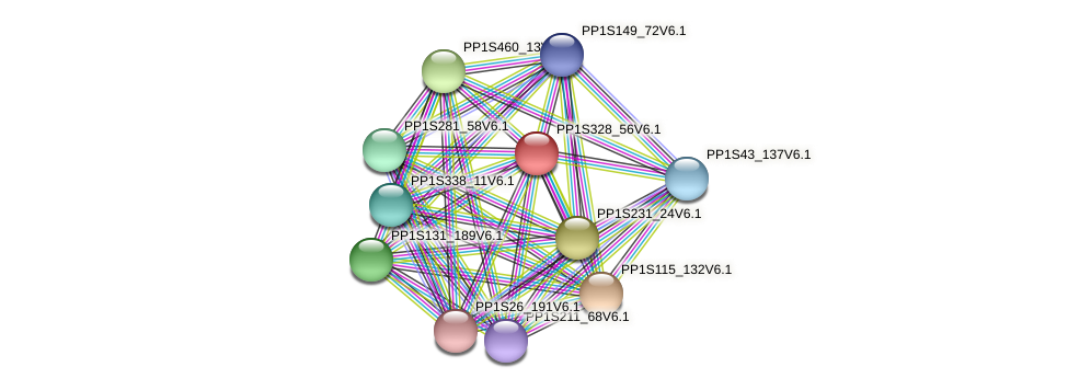 PP1S328_56V6.1 protein (Physcomitrella patens) - STRING interaction network