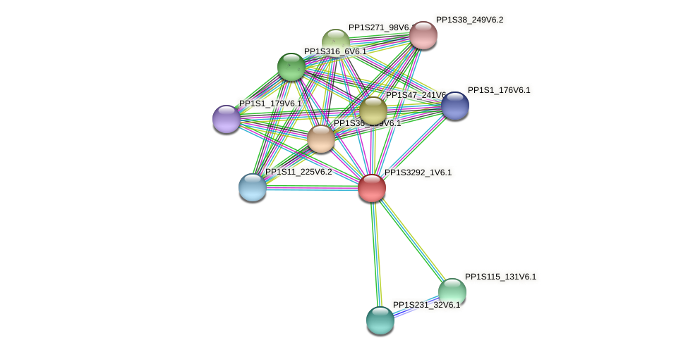 PP1S3292_1V6.1 protein (Physcomitrella patens) - STRING interaction network