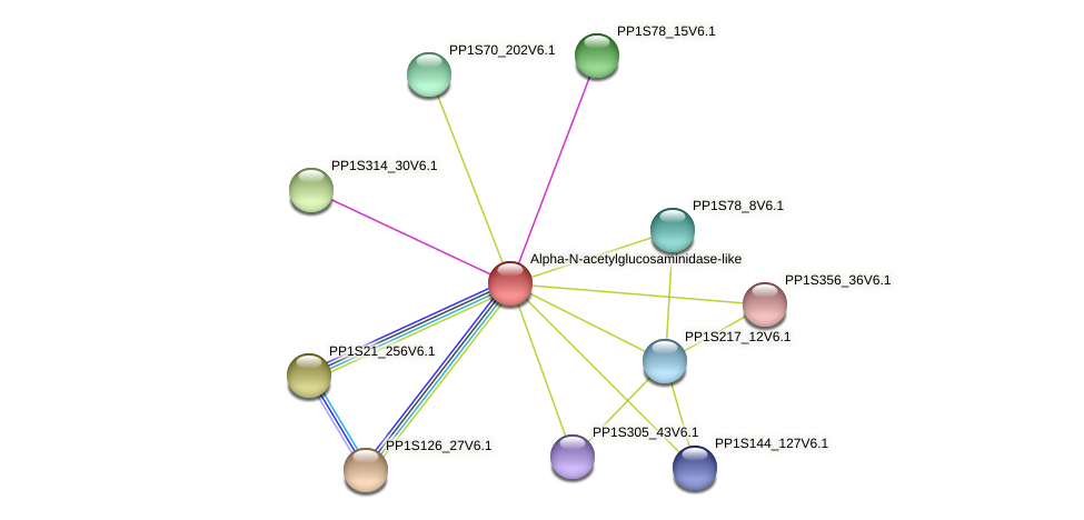 PP1S329_23V6.1 protein (Physcomitrella patens) - STRING interaction network
