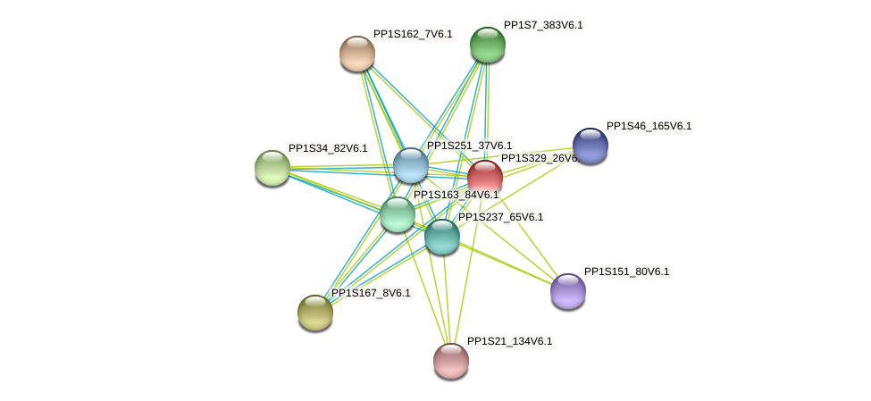 PP1S329_26V6.1 protein (Physcomitrella patens) - STRING interaction network