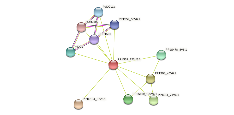 PP1S32_123V6.1 protein (Physcomitrella patens) - STRING interaction network