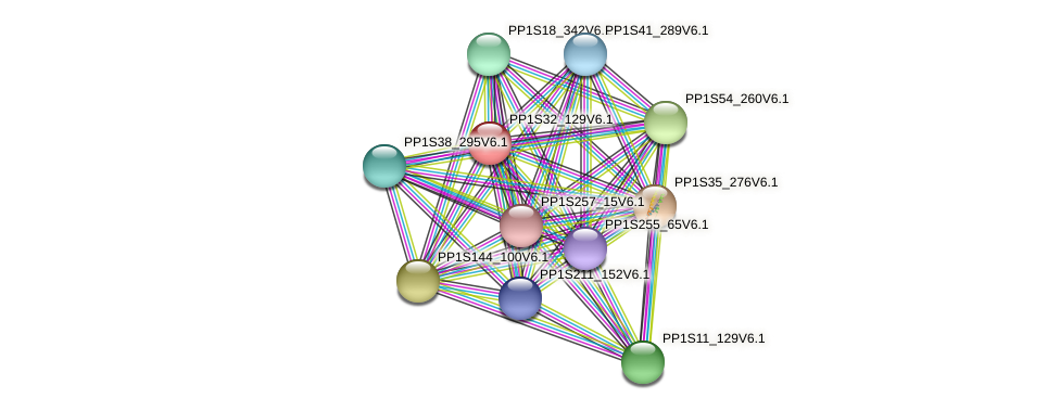 PP1S32_129V6.1 protein (Physcomitrella patens) - STRING interaction network