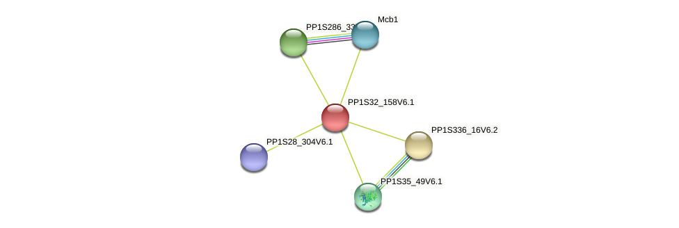 PP1S32_158V6.1 protein (Physcomitrella patens) - STRING interaction network
