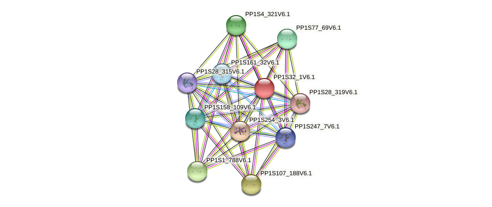 PP1S32_1V6.1 protein (Physcomitrella patens) - STRING interaction network