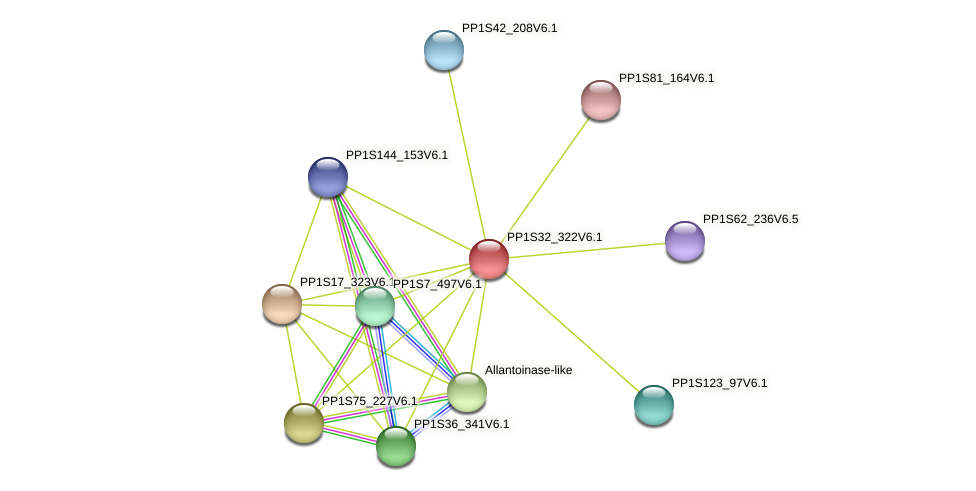 PP1S32_322V6.1 protein (Physcomitrella patens) - STRING interaction network