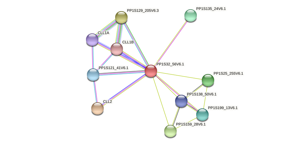 PP1S32_56V6.1 protein (Physcomitrella patens) - STRING interaction network