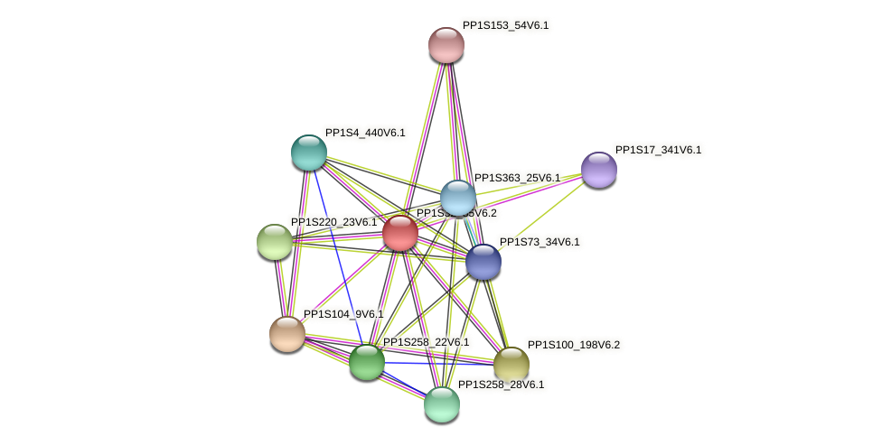 PP1S32_85V6.1 protein (Physcomitrella patens) - STRING interaction network