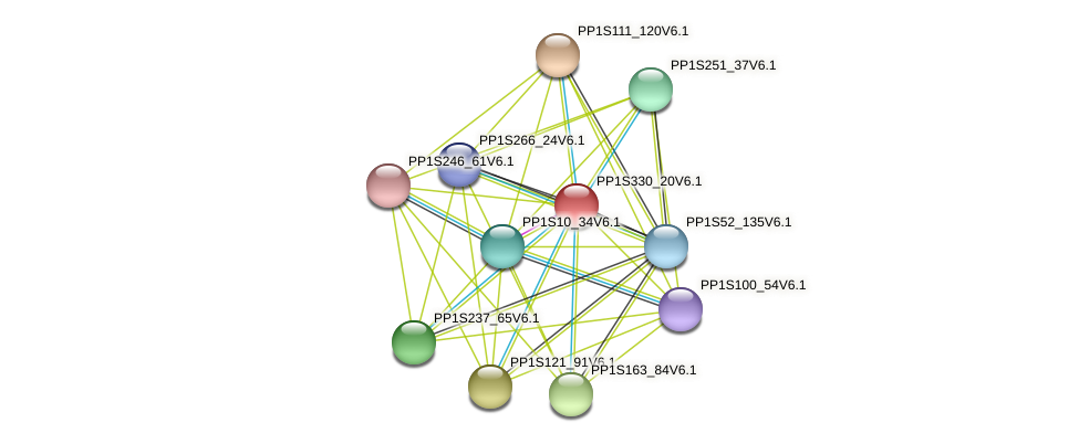 PP1S330_20V6.1 protein (Physcomitrella patens) - STRING interaction network