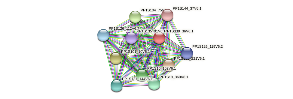 PP1S330_36V6.1 protein (Physcomitrella patens) - STRING interaction network