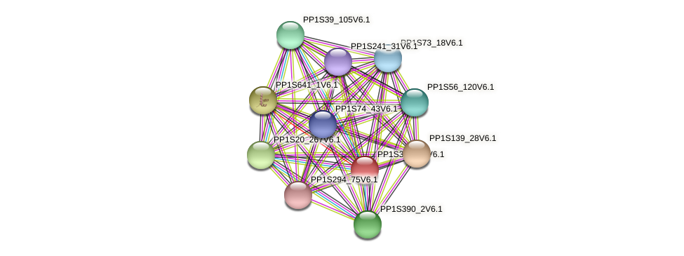 PP1S331_36V6.1 protein (Physcomitrella patens) - STRING interaction network