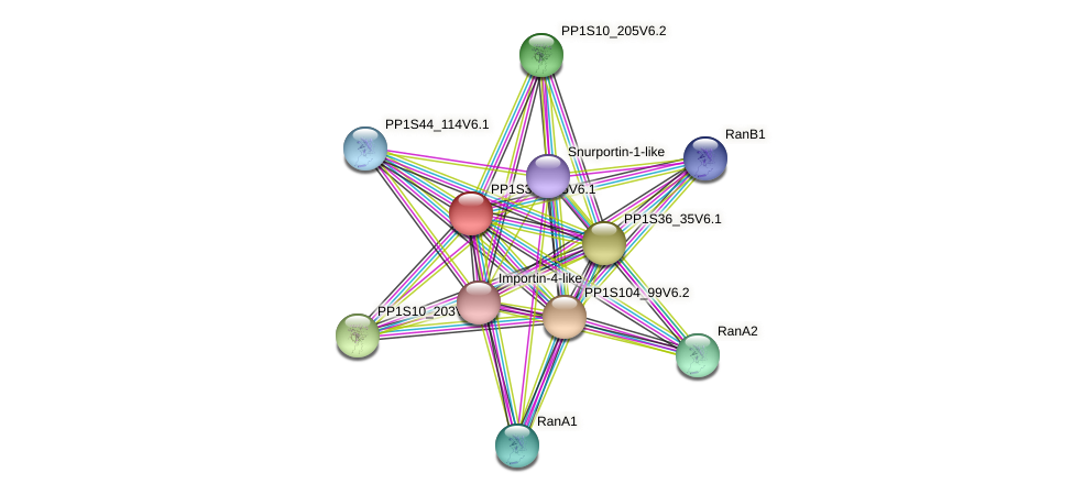 PP1S332_25V6.1 protein (Physcomitrella patens) - STRING interaction network