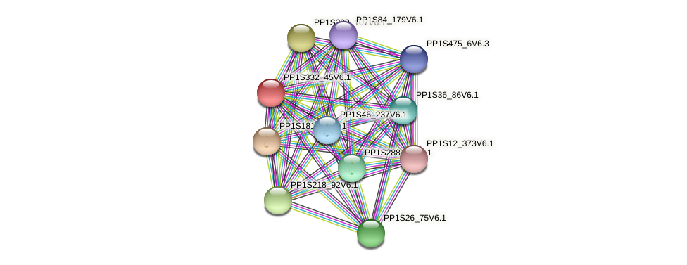 PP1S332_45V6.1 protein (Physcomitrella patens) - STRING interaction network