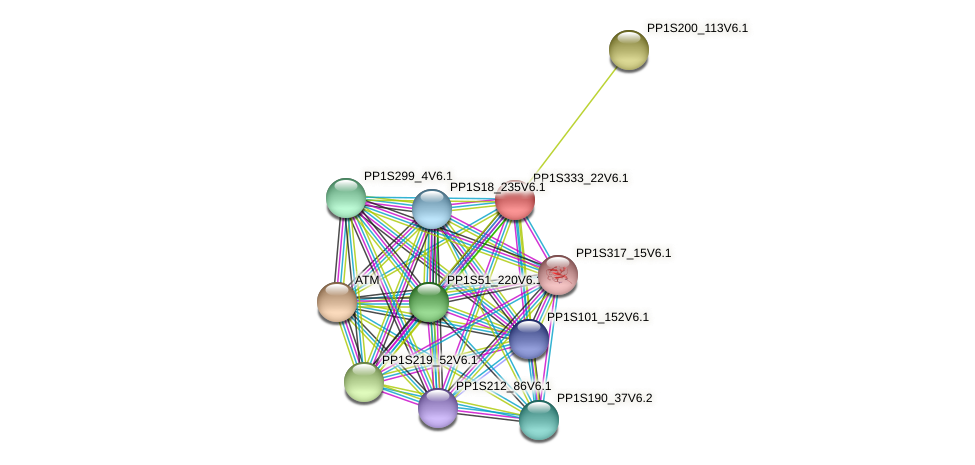 PP1S333_22V6.1 protein (Physcomitrella patens) - STRING interaction network