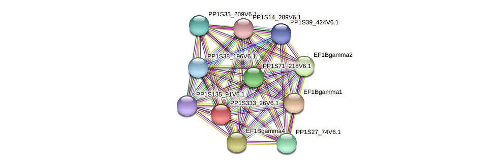 PP1S333_26V6.1 protein (Physcomitrella patens) - STRING interaction network