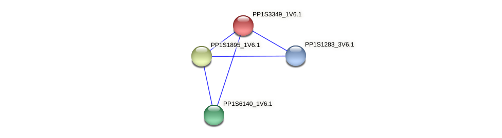 PP1S3349_1V6.1 protein (Physcomitrella patens) - STRING interaction network