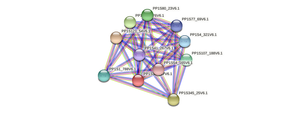 PP1S334_17V6.1 protein (Physcomitrella patens) - STRING interaction network