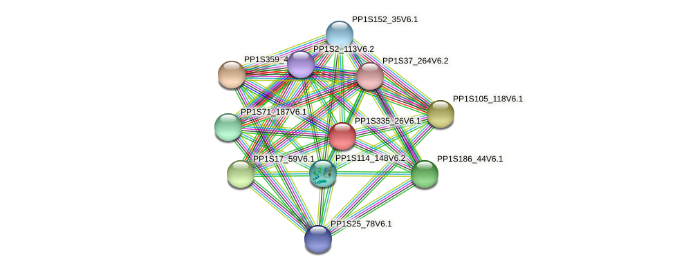 PP1S335_26V6.1 protein (Physcomitrella patens) - STRING interaction network