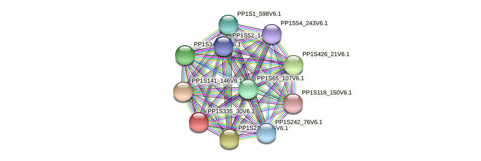 PP1S335_30V6.1 protein (Physcomitrella patens) - STRING interaction network