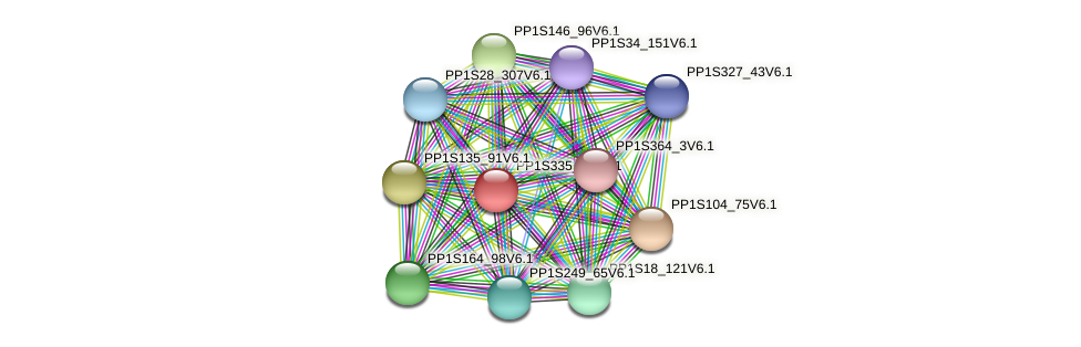 PP1S335_31V6.1 protein (Physcomitrella patens) - STRING interaction network